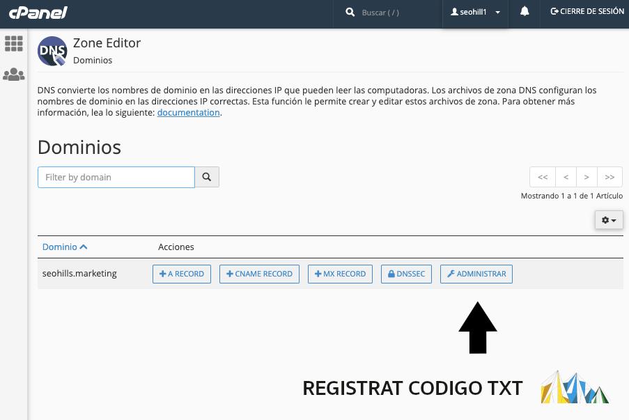 registrat codigo txt en google search console